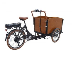 CET-36 Classic Electric Dutch Cargo Tricycle