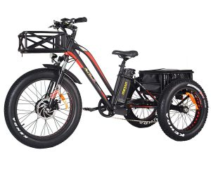 Electric Trike 3 Wheel 750W